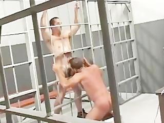 steamy dad prison sex