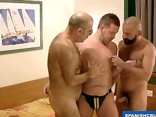 horny bear fucking at the hostel