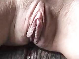 great big fur pie