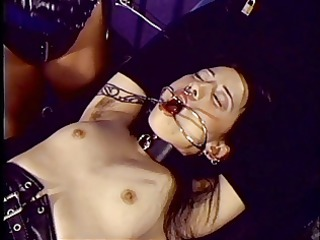 dark brown throat held open whilst bound to table
